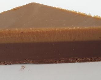 Peanut Butter Fudge Slice (GF)
